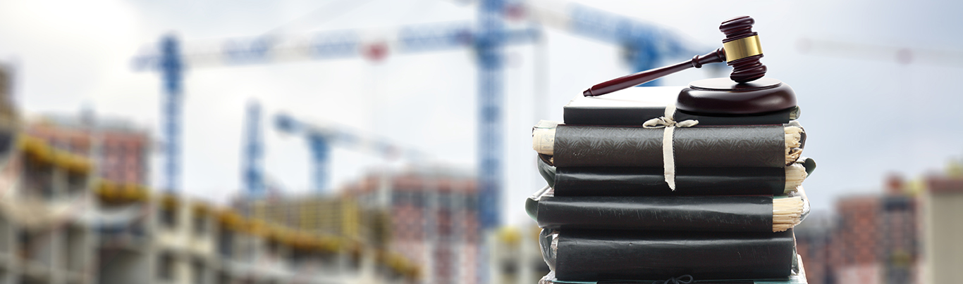 Construction litigation support